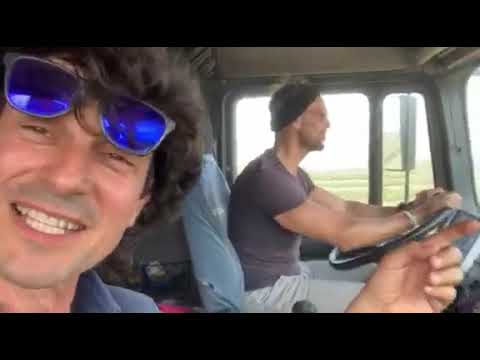 Open Farm: onde verdi di Erba Medica Alfalfa