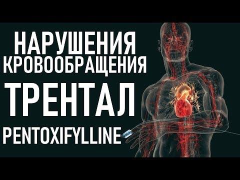 Пентоксифиллин ПОВЫШАЕТ ВЫЖИВАЕМОСТЬ | Trental (pentoxifylline) indications, interactions