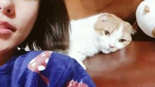 Download Mp3 Jung Wheein and her boyfriend Ggomo