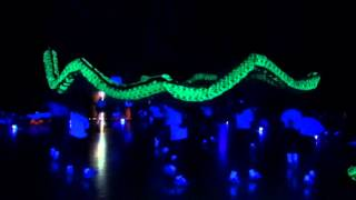 第六屆東區龍獅邀請賽6thEastern小學夜光龍組  海壩