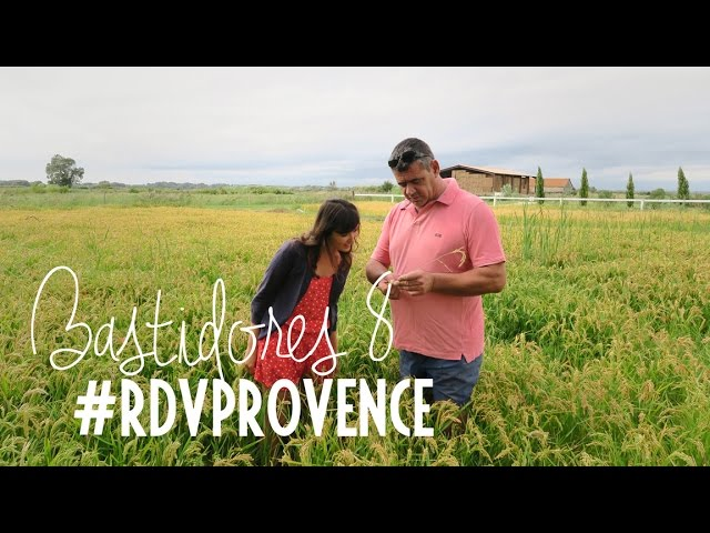 Bastidores do vídeo dos legumes recheados do #RDVPROVENCE