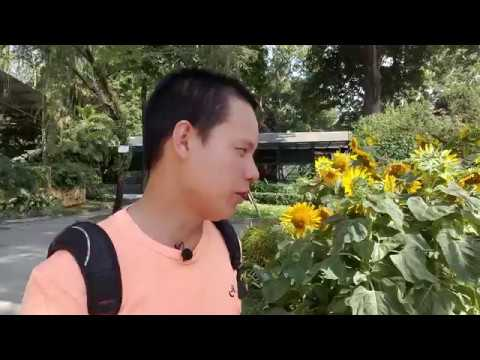 SAIGON ZOO AND BOTANICAL GARDENS BEST PLACE TO RELAX-SAI GON STREET FOOD AND TRAVEL