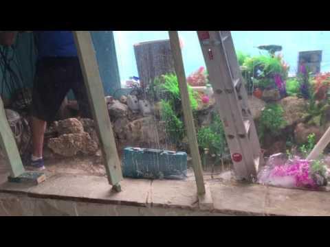 Running cable for the largest Cichlid Aquarium in Australia