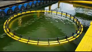 Keramba Jaring Apung (KJA) Offshore Submersible terkecil di dunia (Miniatur)