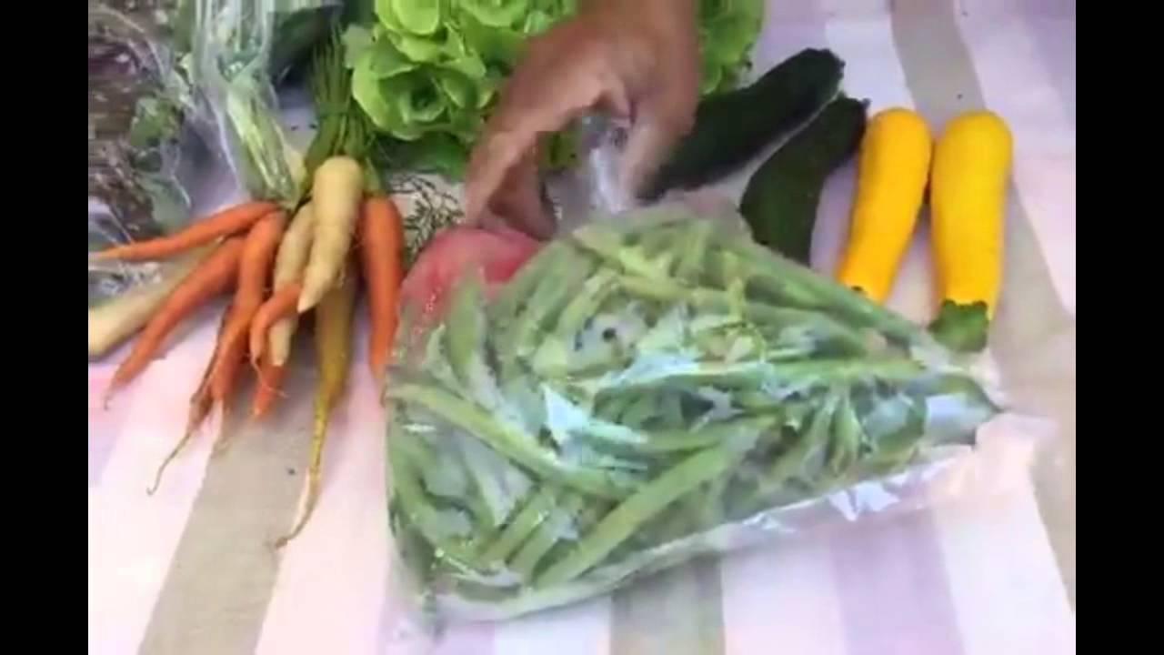 CSA Box 081915 Garden Of Eden Organics