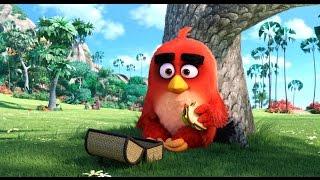 Angry Birds в кино/ The Angry Birds Movie  (2016) Официальный трейлер HD