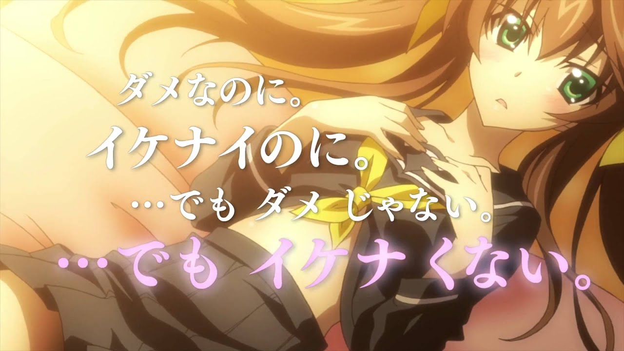 Infinite Stratos 2 OVA World Purge Hen PV