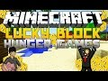 LE COMBAT DES CHANCEUX ! | LUCKY BLOCKS HUNGER GAMES ( Avec Vexios ) | Minecraft