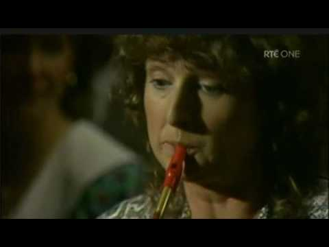 Mary Bergin Tin Whistle