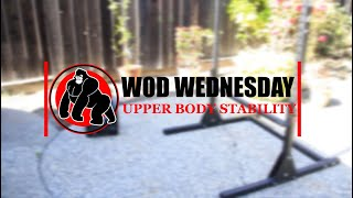 Week 5 WOD Wednesday | How to Improve Upper Body Stability | Shoulder, Back, & Core