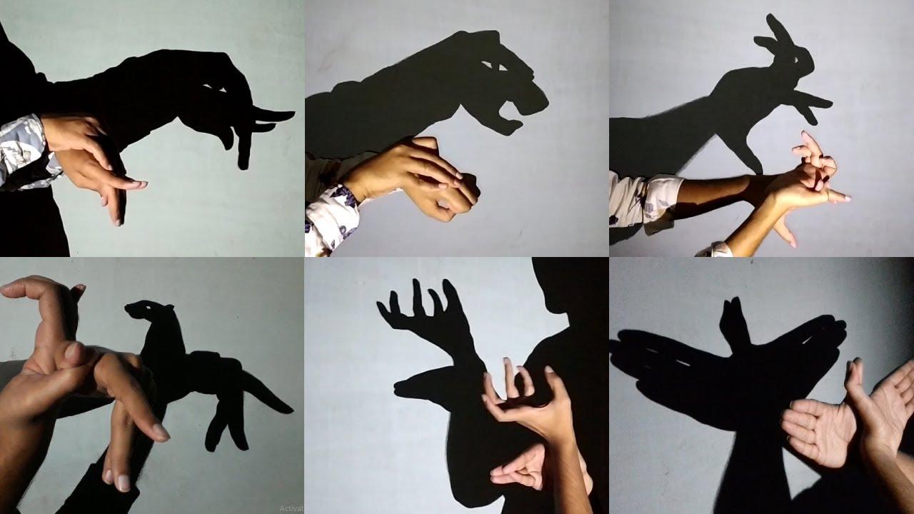 Download Hand shadow Performance III Make Animals By Hand shadow - Shadowgraphy - shadoes