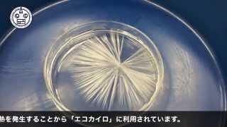 酢酸ナトリウムの結晶