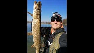 Pike fishing season 2021 opening Oresje lake