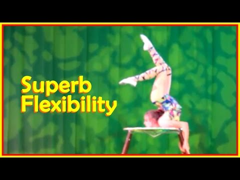Absolutely Talented  Ascending Stars  Demonstrate  Amazing  Stretching  Required For  Folds