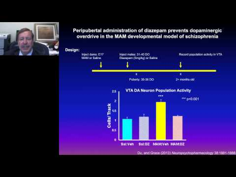 Anthony Grace - When good neurons go bad Dopamine neuron regulation and its disruption in...