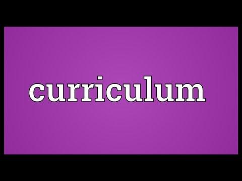 Curriculum Meaning