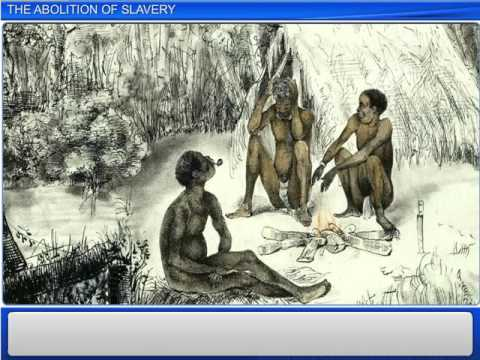 7 The Abolition of Slavery