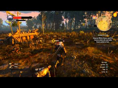 The Witcher 3: Missing in Action - Quest Walkthrough