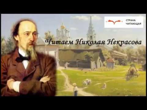 Изображение предпросмотра прочтения – АнастасияМилехина читает произведение «Русь» Н.А.Некрасова