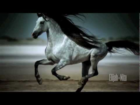Wild Horses Natasha Bedingfield Music Video