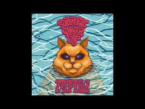 Super Fat Ginger Cat - MAW (2021) (New Full Album)
