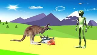 учить животных для малышей - животные для детей - видео развивающее #40