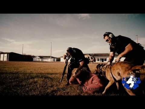 The best K9 tactical training, IST K9, SWAT,  Israel,  Navy SEAL K9 Demo