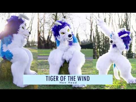 The Tiger Wind