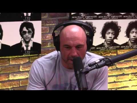 Joe Rogan & Will MacAskill discuss Artificial Intelligence