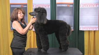Diane Betelak Poodle Face & Tail Demo