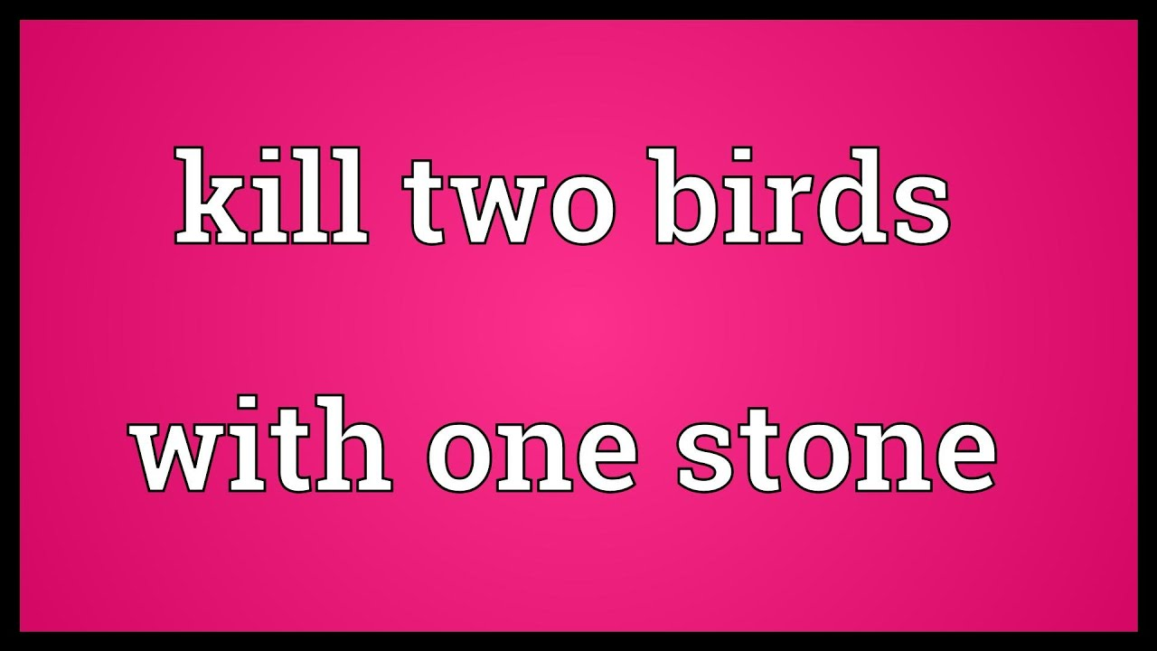 Kill two birds with one stone Meaning - YouTube