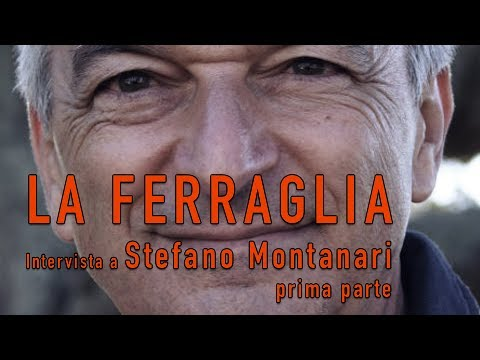 Intervista a Stefano Montanari - 1° parte