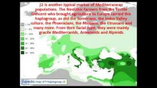 The look and origin of the Mediterranid facial type