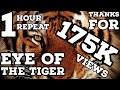 Eye of the Tiger 1 Hour Repeat