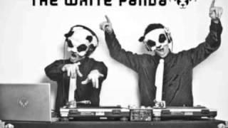The White Panda- Escape Day 'N' Nite