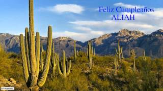 Aliah  Nature & Naturaleza - Happy Birthday