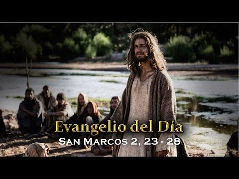 EVANGELIO DEL DÍA – 19 / Septiembre / 2015 - (San Marcos 2, 23-28)
