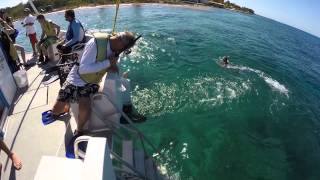 Catamaran Sailing and Snorkeling Tour in Cozumel
