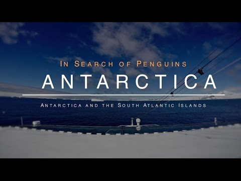 Antarctica - In Search of Penguins