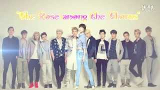 The Rose among the Thorns (SooyoungxEXO) Aff Trailer