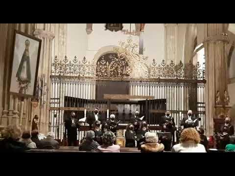 AVE MARÍA (Richards Dubra). Concierto de Semana Santa.