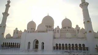 Viaggio storico di Papa Francesco negli Emirati Arabi