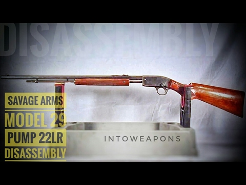 savage-model-29-.22lr-pump-rifle:-review-&-disassembly