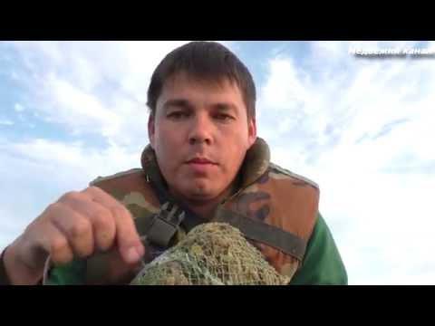 приготовление приманки для ловли леща на кольцо