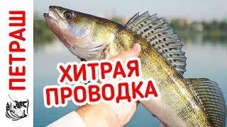 ХИТРАЯ ПРОВОДКА на СУДАКА и окуня! Ловля пассивного хищника! Рыбалка на джиг