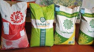 Купили семена подсолнуха и кукурузы. Посевной материал на предстоящий сезон.