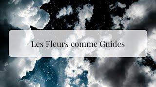 Les Fleurs comme Guides