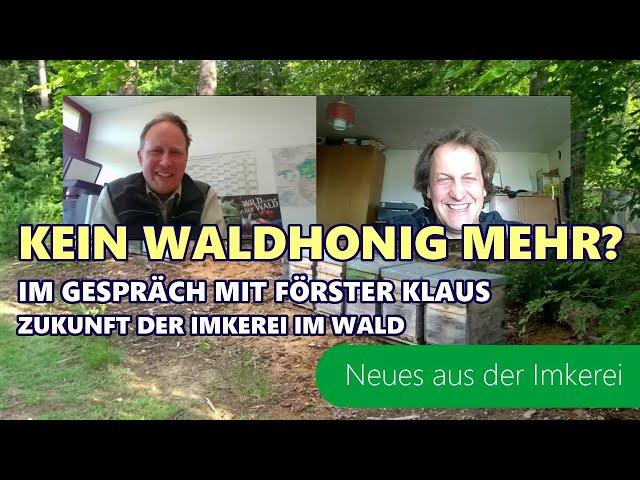 Fichtensterben | Auswirkung auf den Waldhonig | Wald der Zukunft | Imkern in der Zukunft