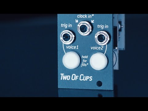 Introducing TWO OF CUPS: 2-voice intuitive sample player for eurorack