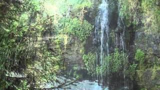 Langenwaldsee